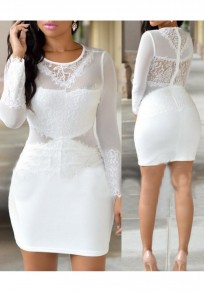 White Patchwork Grenadine Lace Bodycon Long Sleeve Party Mini Dress