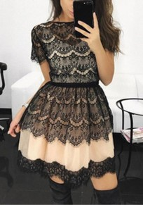 Pink Lace Grenadine Pleated Tutu Homecoming Party Sweet Cute Mini Dress
