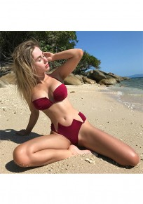 Wine Red Tie Back Crop 2-in-1 Fashion Swimwear