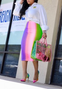 Pink Color Block Omombre Rainbow Bodycon High Waisted Elegant Party Skirt